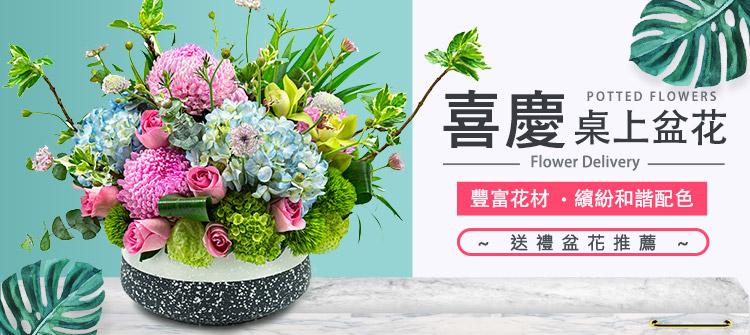 首頁大Banner-桌上盆花