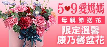 首頁右下小Banner-康乃馨盆花