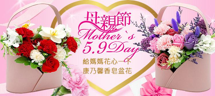首頁大Banner-康乃馨香皂盆花