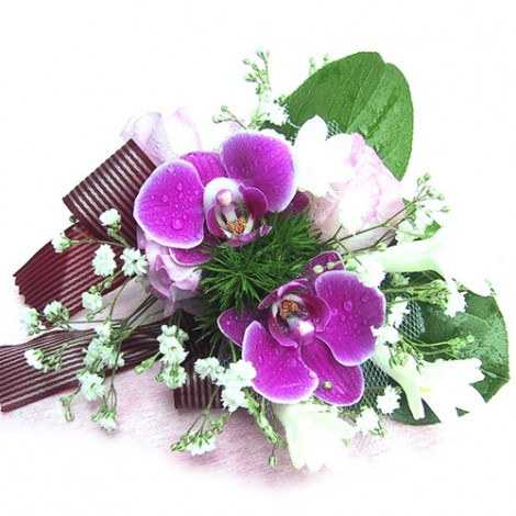 胸花-雙朵蝴蝶蘭 胸花 緞帶 鮮花 記者會