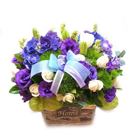 盆花六 開幕 盆花 生日 百合 玫瑰 週年慶 生產 喬遷 桔梗 展示會 榮陞 飛燕草
