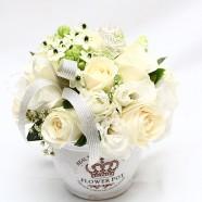 白色情人節花禮 幸福白玫瑰盆花 網路訂花 推薦