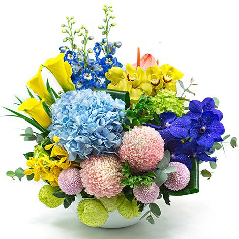 台北花店 祝福送禮  祝賀花籃 節慶祝福盆花
