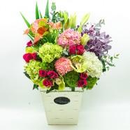開幕會議迎賓 玫瑰繡球盆花 花店送禮