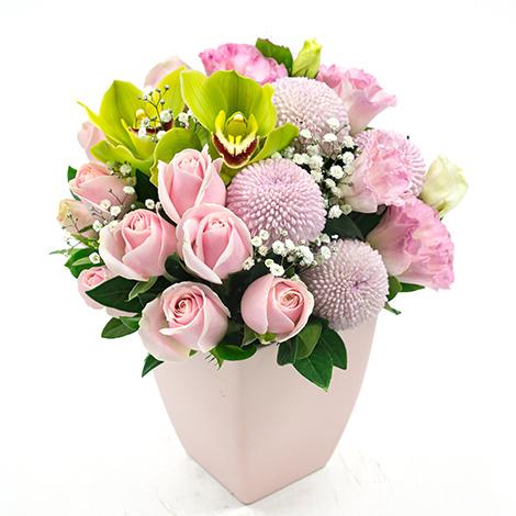 幸福滿溢 粉玫瑰桌上小盆花 生日祝賀 萬代蘭 桌上盆花 小盆花 紅萬岱
