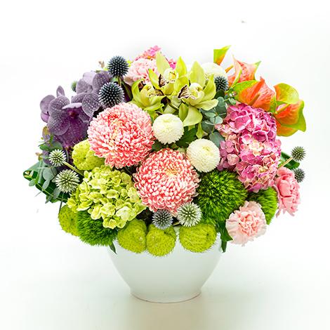 花的饗宴盆花