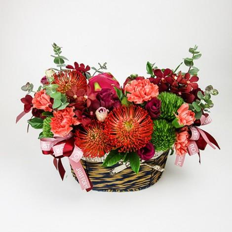 祝賀送禮 推薦紅玫瑰火龍果盆花 開幕送禮 祝壽 生日禮物