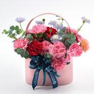 母親節禮物 康乃馨盆花 花店限定