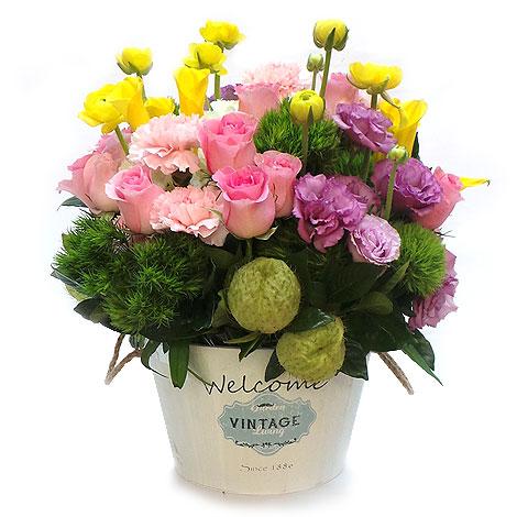 花店送花 送禮盆花 玫瑰組合盆花 玫瑰花 送禮盆花 花店送花 組合盆花