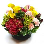 花店送花 幸福洋溢桌上盆花 鮮花盆花