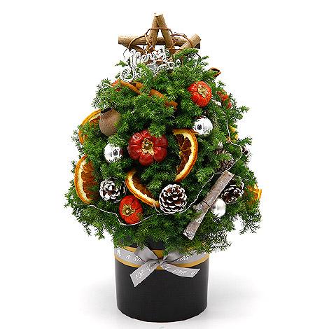 熱銷聖誕節禮物推薦 經典聖誕樹 聖誕送禮首選 聖誕樹佈置 耶誕禮物