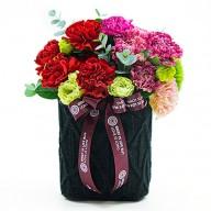 母親節送花 想念您康乃馨盆花 限量推出
