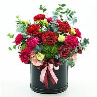 母親節送媽媽 我愛您康乃馨盆花 媽媽我愛您